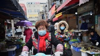 焦点对话:当局连封多城,能否控制致命病毒?