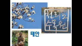 [태안] 천리포 수목원 / 민병갈 박사