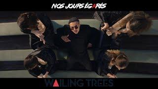 Wailing Trees - Nos jours égarés (Clip officiel)