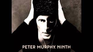 Peter Murphy - Memory Go