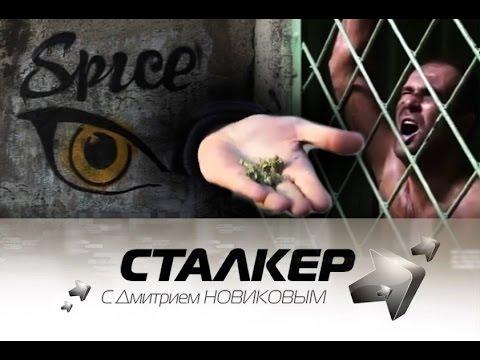 Stalker_184__22.11.14_спайс, соль, порох - смертельные случаи