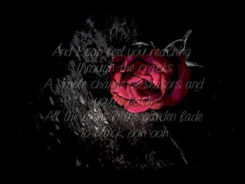 Carly Rae Jepsen Roses Lyrics Youtube