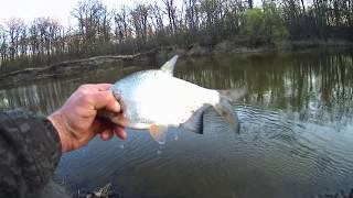 Рыбалка на донную снасть на реке 30 апреля 2020