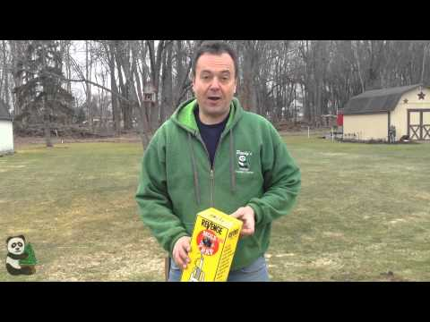How to get rid of Moles and Voles in your lawn