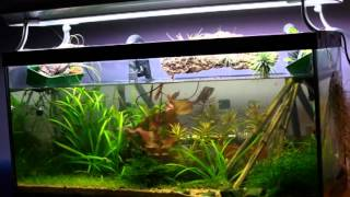 Aquarium Stands Of Metal And Wood