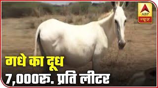 Gujarat: Donkey milk will be u…