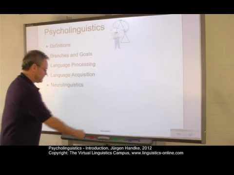 PSY101 - Psycholinguistics - An Overview