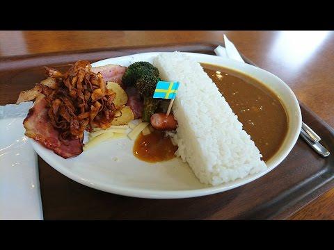 【宮ヶ瀬ダム】ダムカレーを食べてみた!ダムカードもゲット!