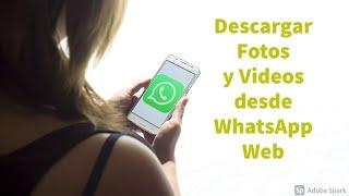 Como Descargar Videos de WhatsApp Web a la PC (Videos, Fotos, Doc.) Fácil