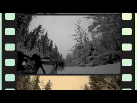 Dogsledding with Revelstoke Dogsled Adventures and RMR