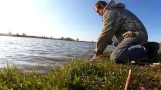 И снова Николаевка и фидер, ловля карася онлайн. Кормушка печенье, отруби, жаренные семечки