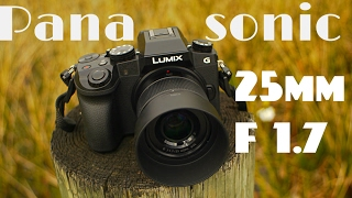 panasonic lumix g 25mm f 1 7 real world review h h025 asph best street photography lens