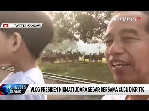 Warganet Minta Presiden Jokowi Serius Tangani Kebakaran Hutan