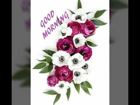 Good morning tamil song 22