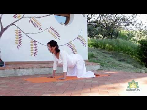Yoga online - Harmony serenar sentir
