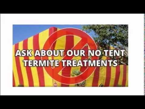 AAA Pest Control - Termite Solutions - Wholesale Fumigation
