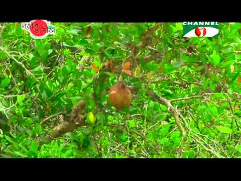 Nature and Life   Episode 59 World Heritage and Ramsar Sites