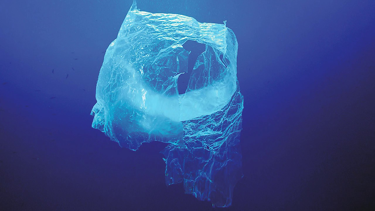 Plastic Pollution And The Planet