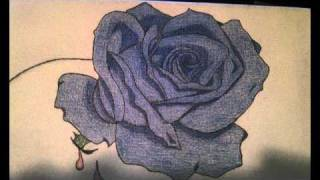A Bleeding Heart and Rose (drawing)