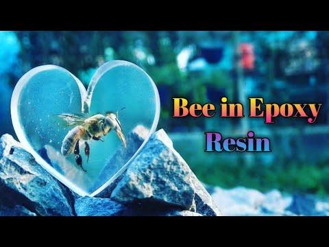 Bee in Epoxy Resin. DIY / Resin Art