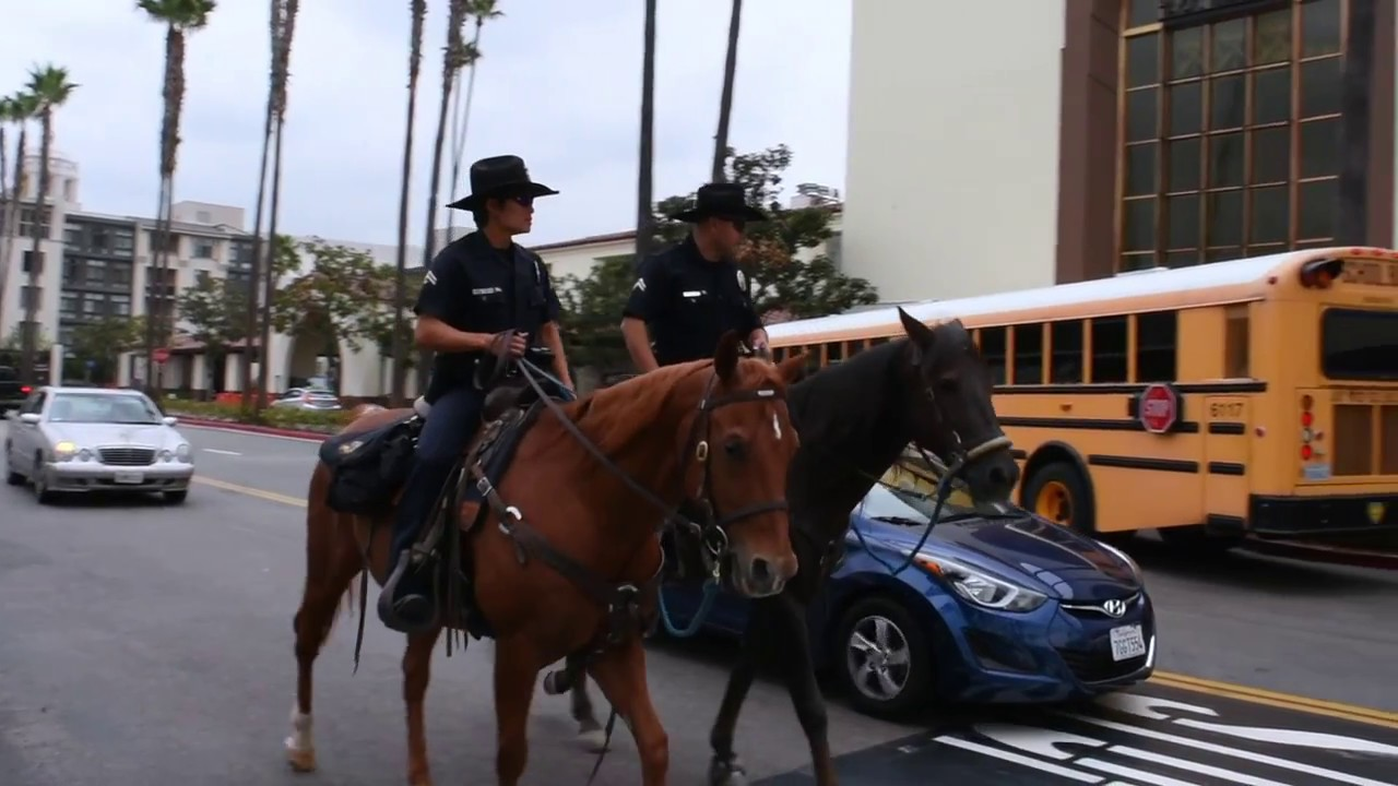 Officer Lo: LAPD Mounted Officer
