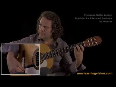 Demo of Flamenco Guitar Lesson, Seguiriya for Advanced Beginner by Adam del Monte