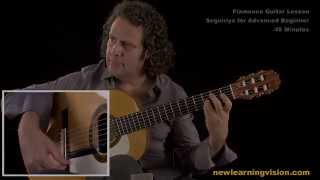 Demo of Flamenco Guitar Lesson, Seguiriya for Advanced Beginner by Adam del Monte
