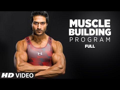 Guru Mann (Size 8) - Muscle Building Program    Body Fitness and Workout By Guru Mann