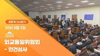 [국회방송 생중계] 외교통일위원회-안건심사(20.8.3…