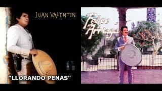 JUAN VALENTIN Y FELIPE ARRIAGA MIX 10 EXITOS PEGADITOS