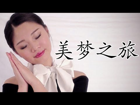 [ASMR] 美梦之旅 Chinese Roleplay - Flight Attendant 中文