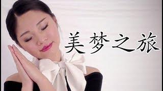 [ASMR] 美梦之旅 Chinese Roleplay - Flight Attendant 中文