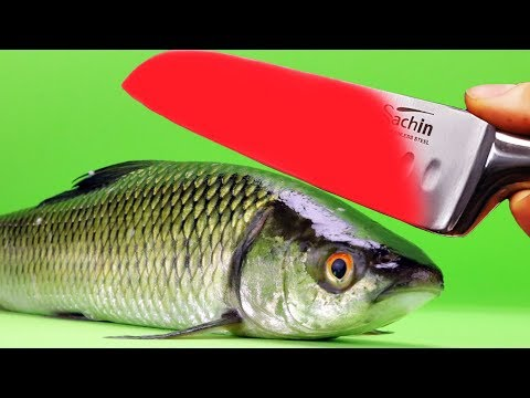 EXPERIMENT Glowing 1000 Degree KNIFE VS FISH
