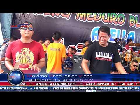 Perawan Kalimantan -  Widi ft  Monalisa  PESTA  LAUT 2017  BAJING MEDURO BLOK KULON