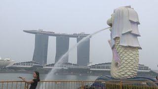 싱가포르 벌써부터 후끈…호텔 객실 동났다 / 연합뉴스T…
