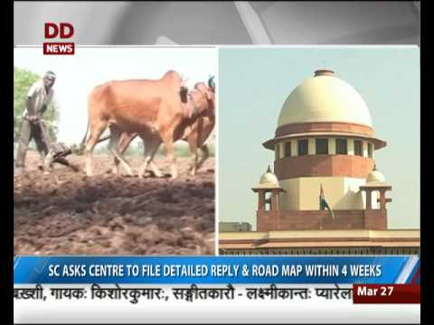 Farmer Suicide cases: SC asks centre to file detailed reply and roadmap within 4 weeks