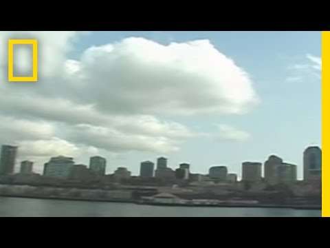 Seattle Quake | National Geographic