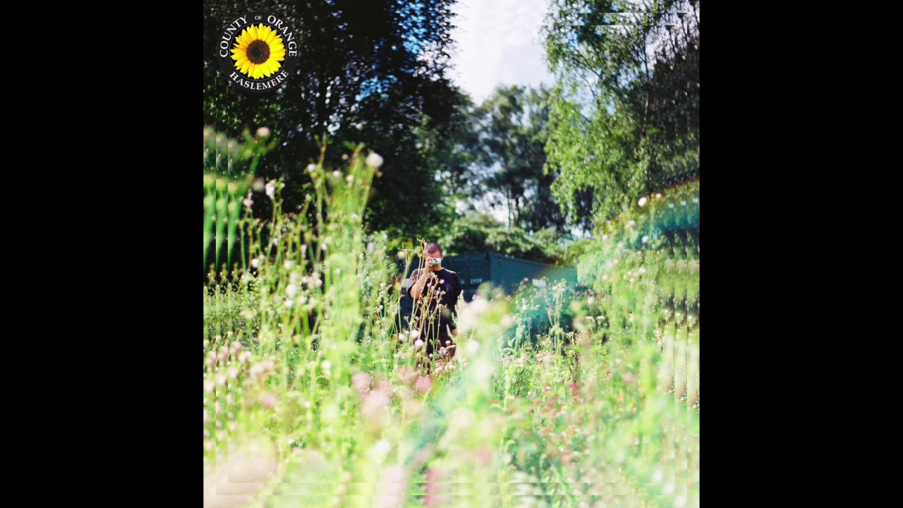 REX ORANGE COUNTY - SUNFLOWER
