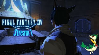 Final Fantasy XIV Online Stream 1 | This Game is GORGEOUS