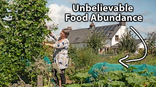 Living the Self-Sufficiency Dream on a Tiny Homestead   Organic & Permaculture Abundance