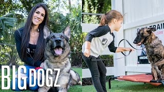 Training $70K Attack Dogs... With Our 4 YearOld | BIG DOGZ