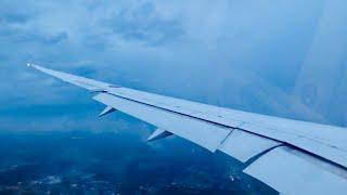 ANA 787 INCREDIBLE Crosswind Landing in Tokyo Narita during Typhoon!