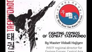 Fighting Combos of non-sport Combat Taekwondo (old demo 2003)