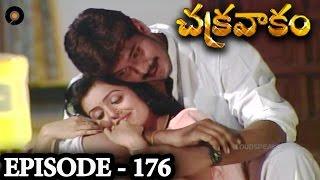 Episode 176   Chakravakam Telugu Daily Serial