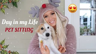 A Day in My Life as a Pet Sitter 🐶 | Vlogmas Day 9