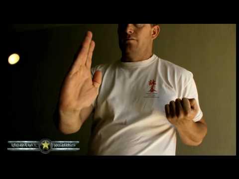 Little Idea Stephen Joffe Martialworks
