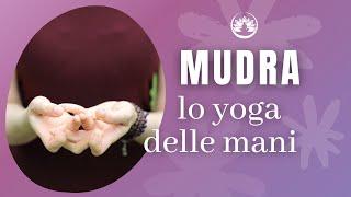 Come meditare, parte 4: i mudra, le posizioni delle mani