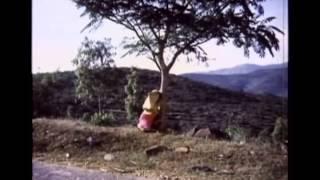 bandalo bandalo - Sangliana - Shankarnag hits