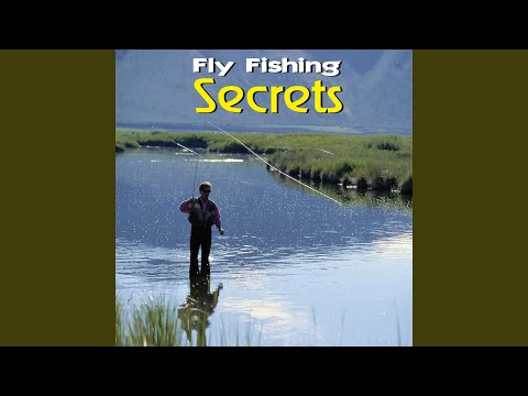 Tips Of Fly Fishing