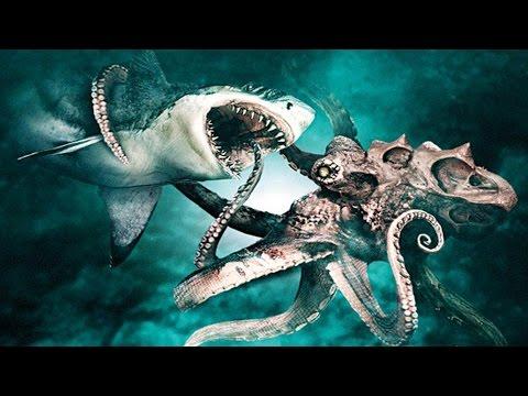 Kraken vs Megalodon